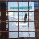 SBC Bailiffs Assault Shop Owner