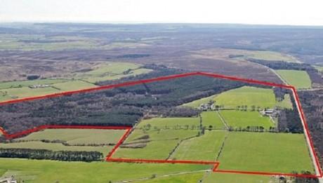 York Potash's Proposed Dove's Nest Site