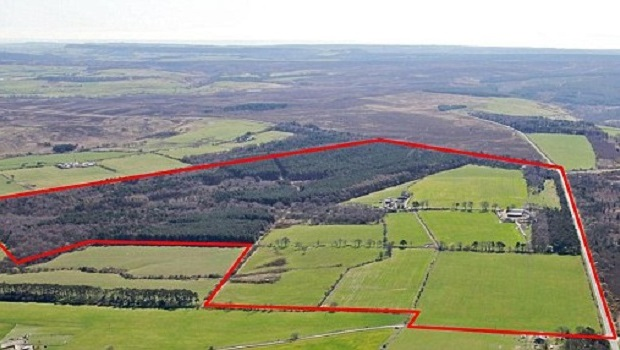 York Potash's Proposed Dove's Nest Site