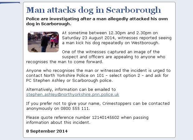 NYP_Man_Attacks_Dog