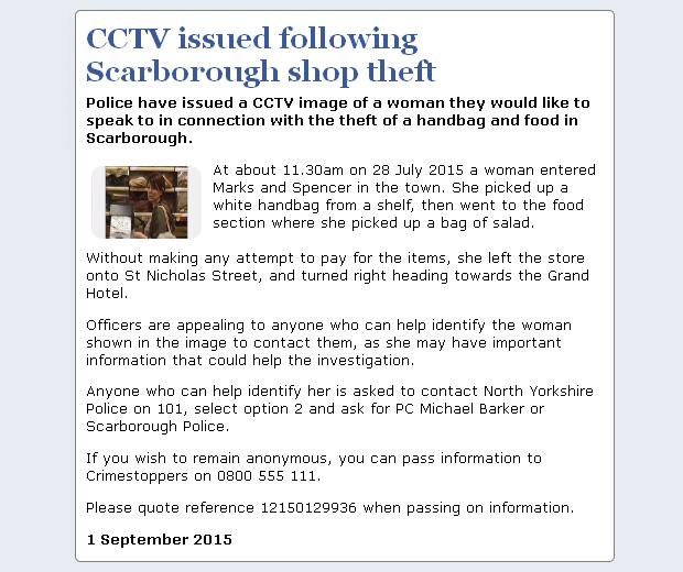 NYP_CCTV_Scarborough_Handbag