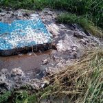 Whitby Raw Sewage Leak: Up-Date
