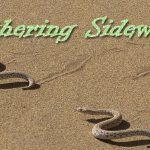 SBC: Slithering Sideways